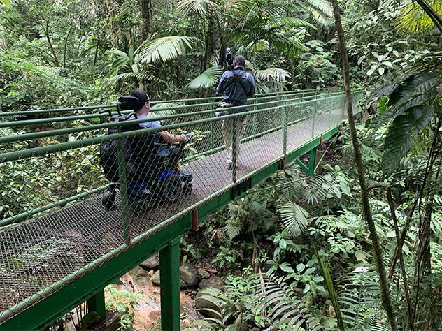 Turismo sostenible: diversidad. La mayor parte de los espacios naturales de Costa Rica son aptos para las personas con discapacidad