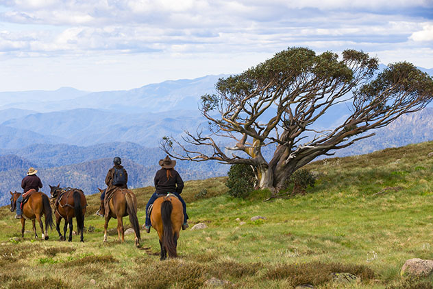 Turismo sostenible: comunidad. De ruta en Victoria, Australia