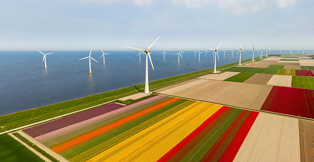 Un viaje virtual con Voyager de Google Earth: aprender, parque eólico Mar del Norte, Países Bajos