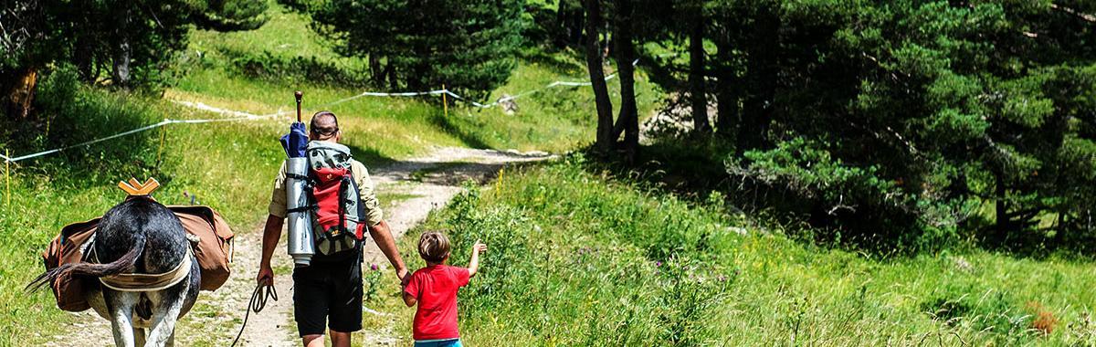 'Trekking' con burro, Pirineos, España