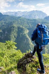 Contemplando el prístino bosque del Parque Nacional Sutjeska, Bosnia y Herzegovina