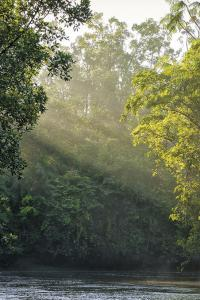 Río Amazonas, Brasil