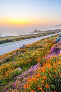 Costa del Pacífico, Pacific Coast Hwy, Big Sur, California, Estados Unidos