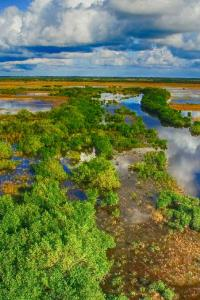 Everglades National Park, Florida, costa este de EE UU