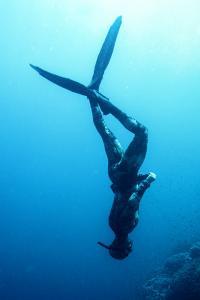 Bucear en el Mar Rojo, Egipto