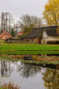 Parque Nacional Gauja, Letonia, en octubre