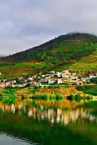 Viñedos del valle del Douro, Portugal