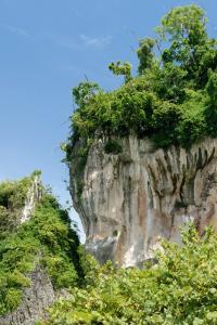 Parque Nacional Los Haitises, península de Samaná, República Dominicana