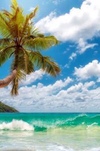 Playa Anse Takamaka, Isla Mahé, Seychelles