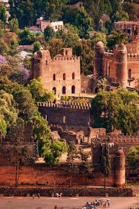 Turismo sostenible: Fasil Ghebbi, Gondar, Etiopía
