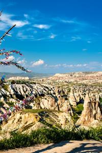 Árbol de los deseos, Capadocia, Turquía