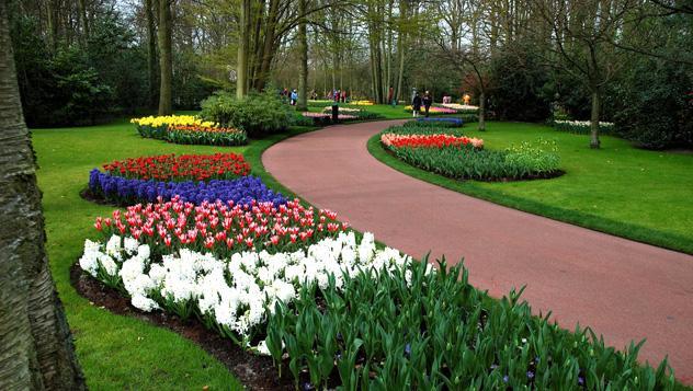 Keukenhof, Países Bajos
