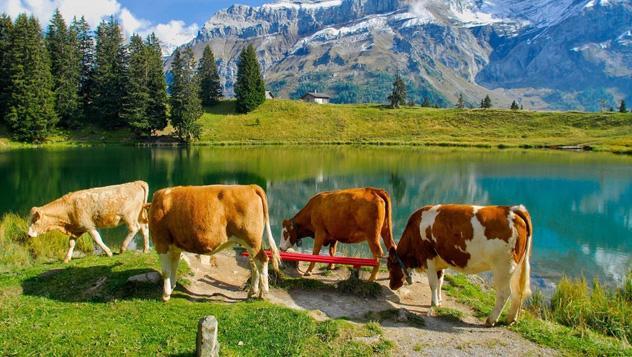 Pueblo de Suiza