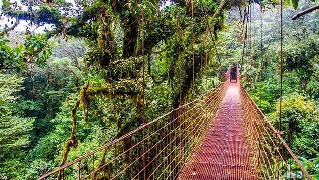 Selva de Costa Rica