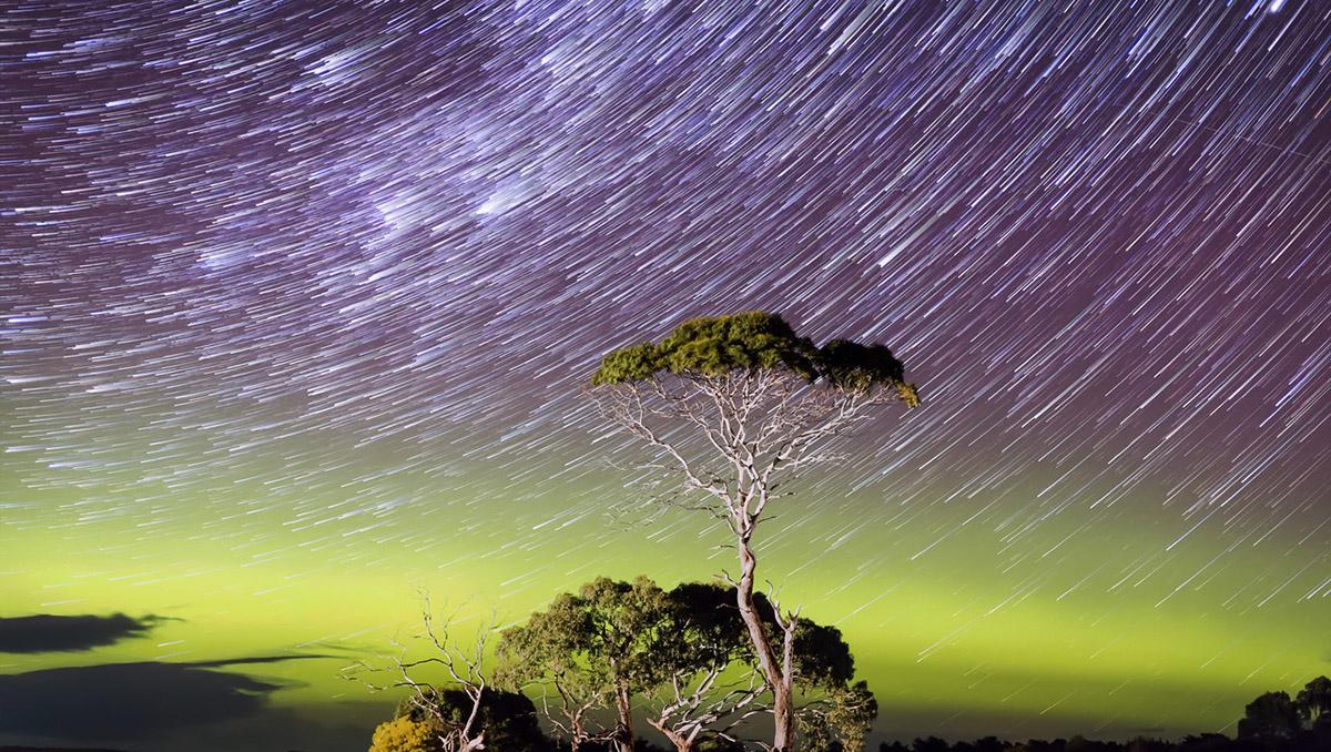 Astrofotografía de la Vía Láctea y cielo oscuro