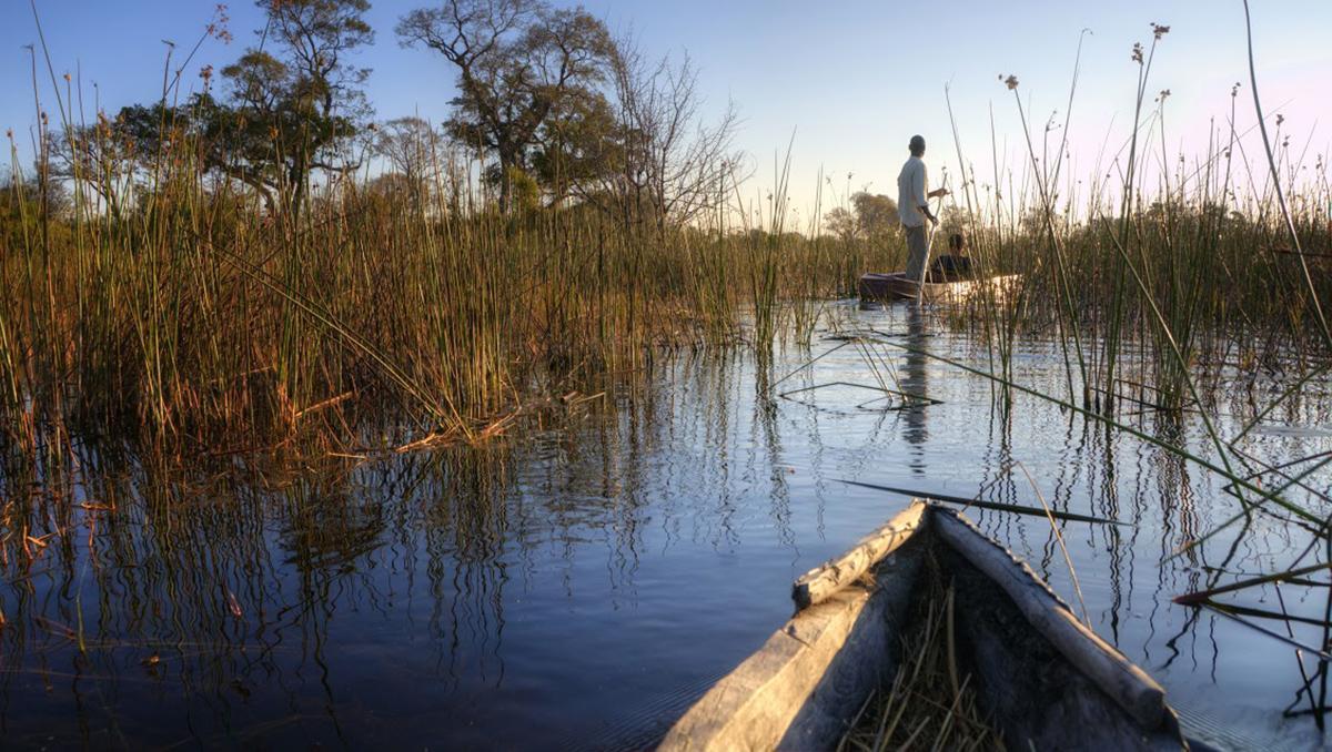 Un paseo en barco por el delta del Okavango, Botsuana