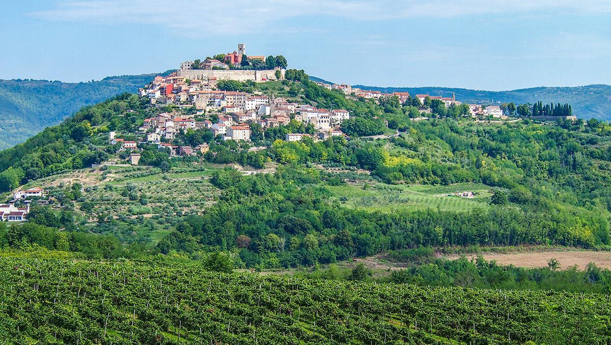 Pueblo cimero de Motovun rodeado de viñedos, Istria, Croacia