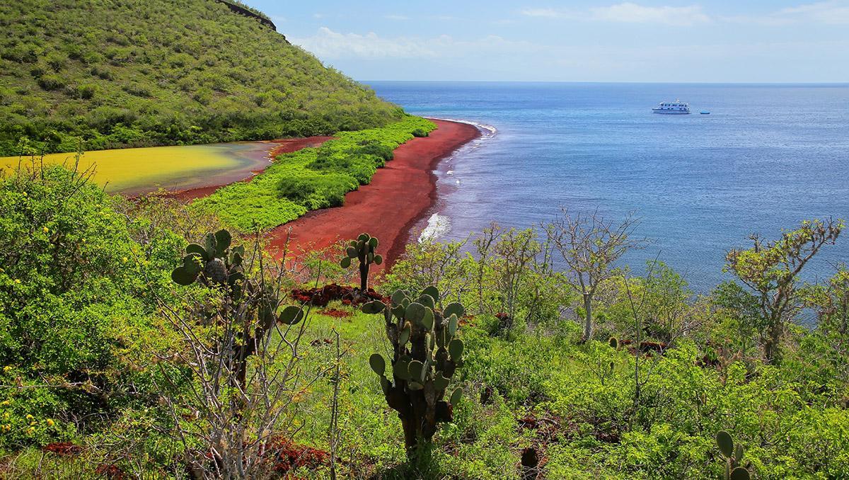 Isla Rábida, Galápagos, Ecuador