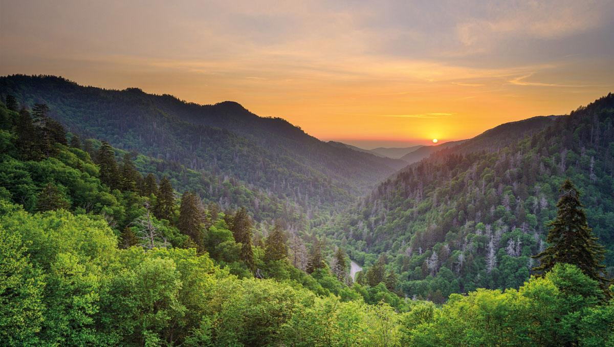 Parque Nacional de las Great Smoky Mountains, EE UU