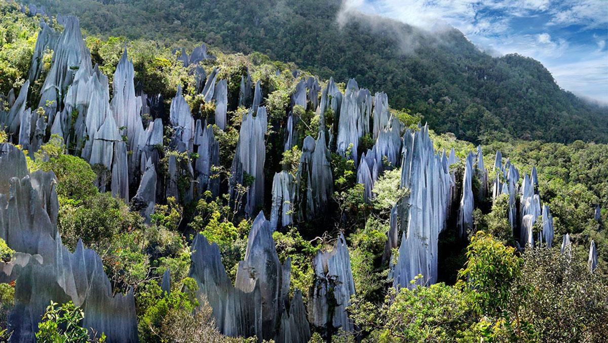 Parque Nacional de Gunung Mulu, Malasia