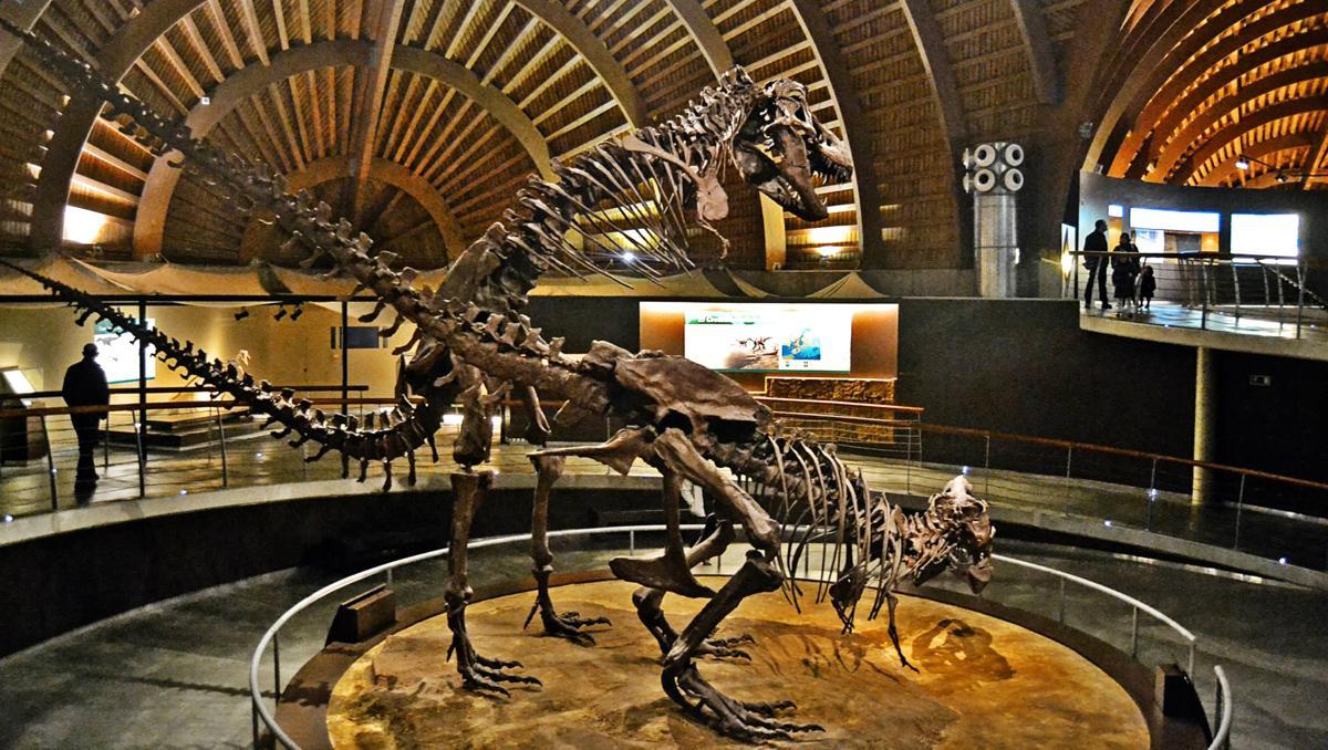 Museo Jurásico