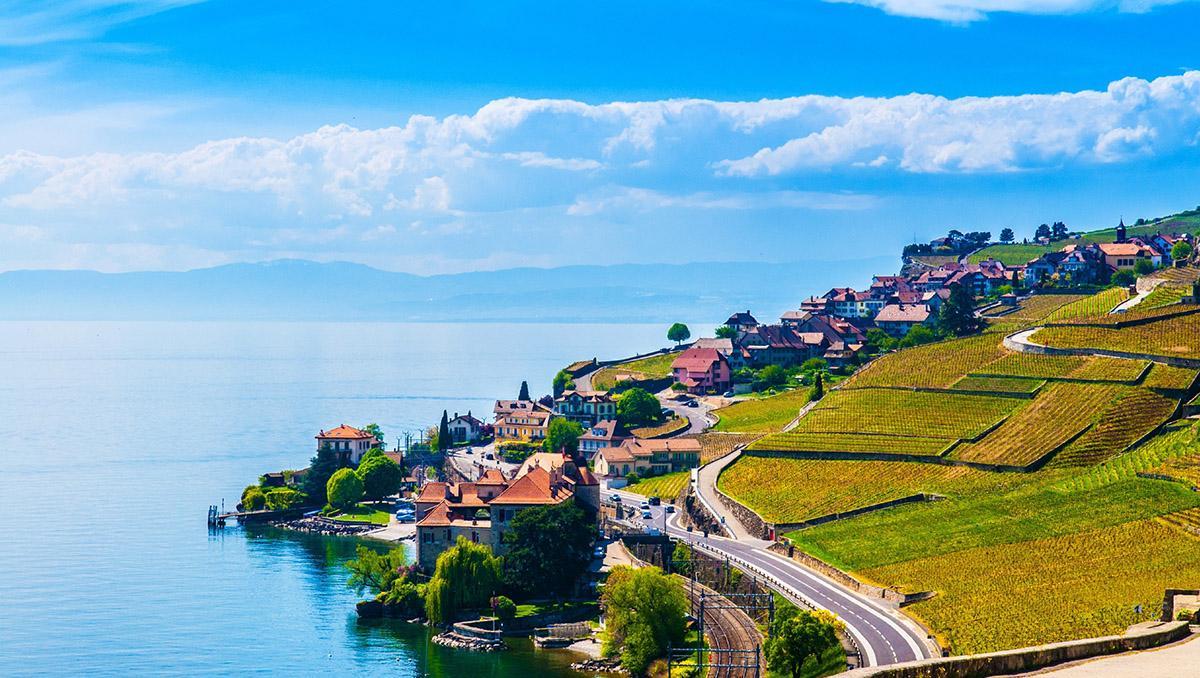 Los viñedos de Lavaux, declarados Patrimonio Mundial, junto al lago Lemán, alrededores de Vevey, Suiza