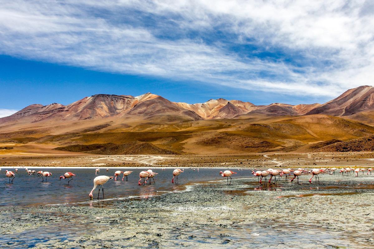 Lago en el desierto, sureste de Bolivia