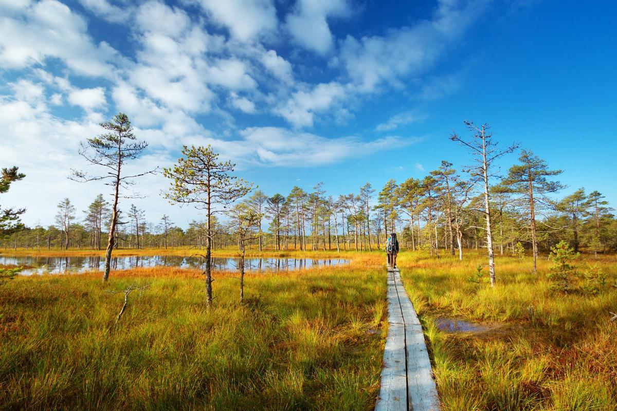 Parque Nacional Lahemaa, Estonia