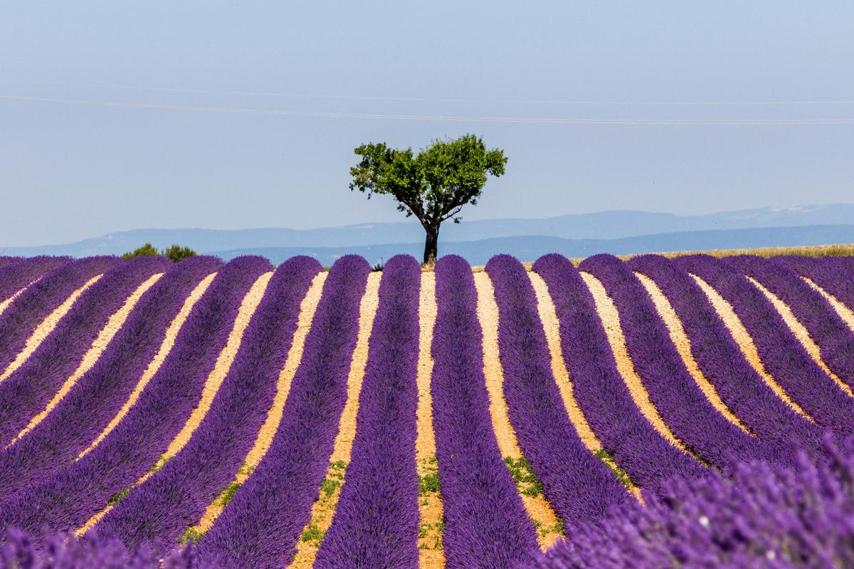 Provence-Alpes-Cote d'Azur, Francia