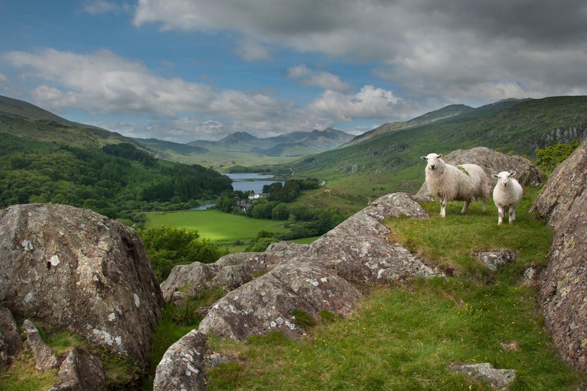 Parque Nacional de Snowdonia, Gales
