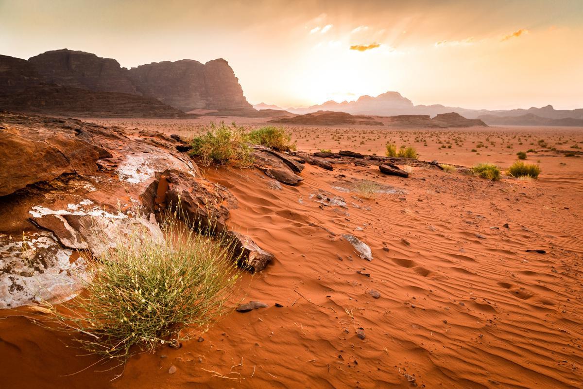 Desierto Wadi Rum, Jordania