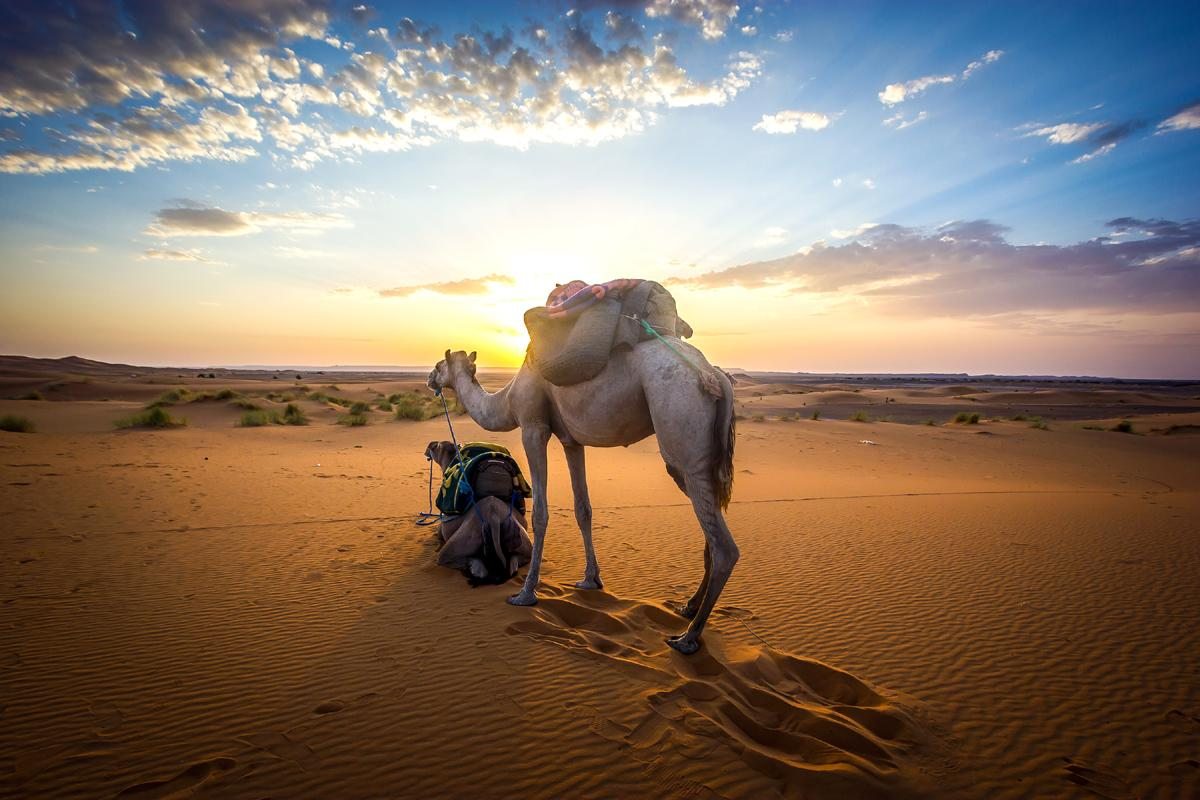 Sáhara, Marruecos
