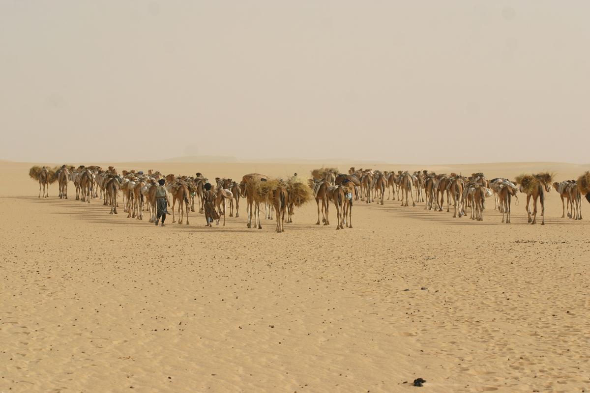 Desierto del Sáhara, Mauritania