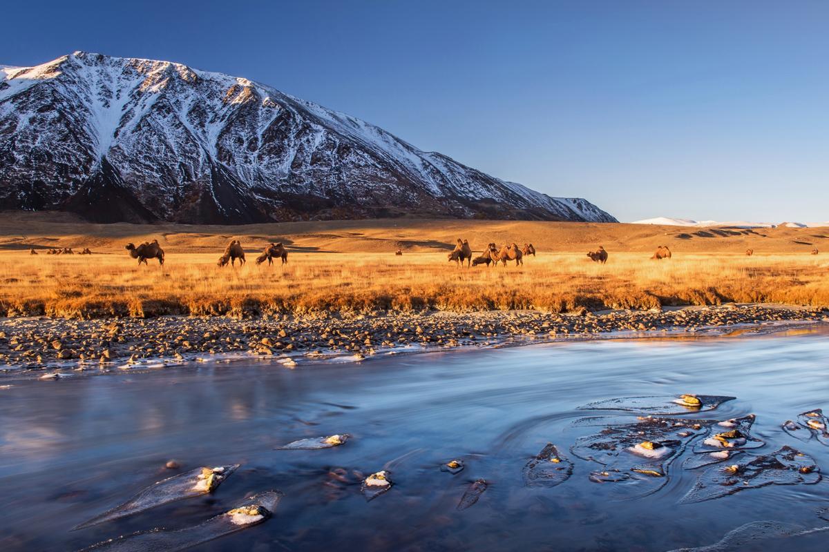 Parque Nacional Altai Tavanbogd, Mongolia