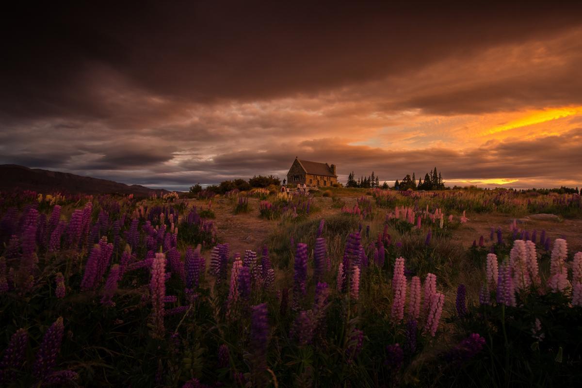 Iglesia Good Shepherd, Canterbury, Nueva Zelanda