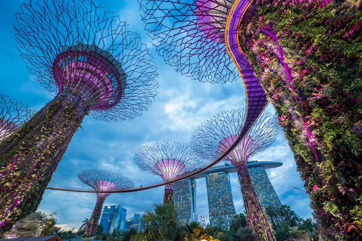 Gardens by the Bay, Singapur, Singapur