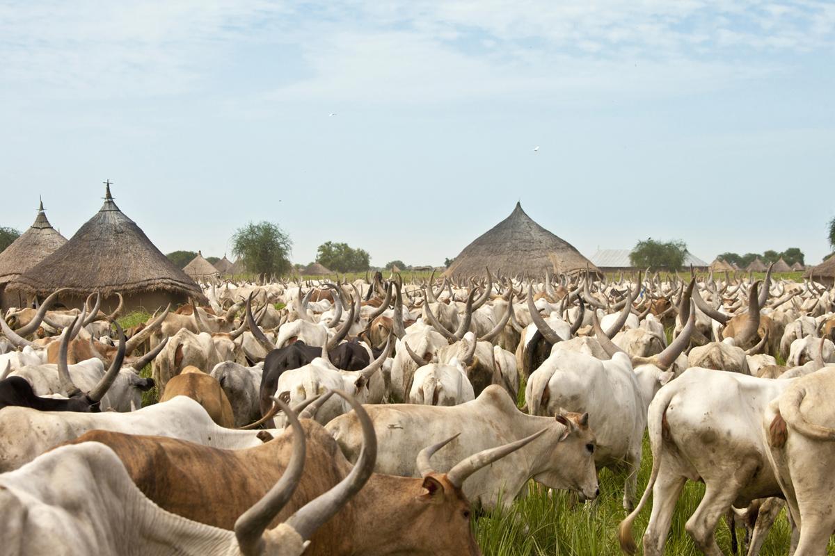 Parque Nacional Boma, Sudán del Sur