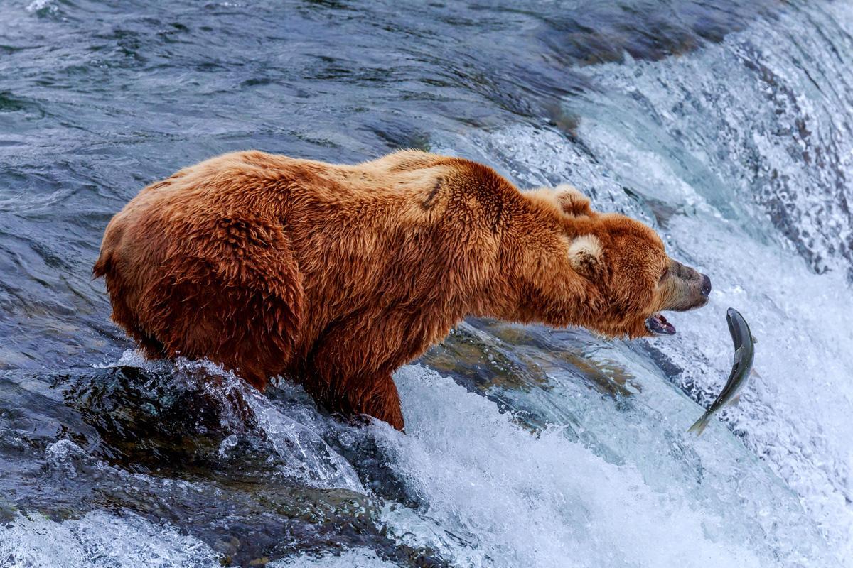 Parque Nacional Katmani, Alaska, EE UU