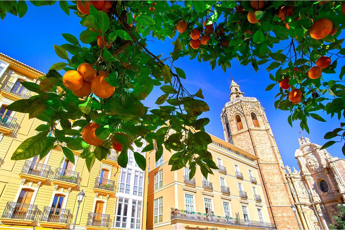Plaza de la Reina, Valencia, España