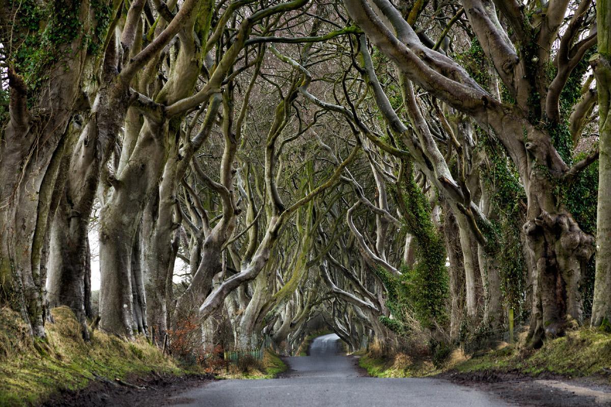 Condado de Antrim, Irlanda del Norte