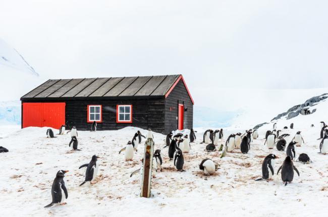 Bransfield House británica, Port Lockroy, Antártida