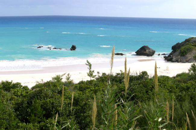 Horseshoe Bay, Bermudas