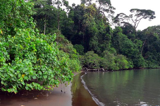 Limbe, Camerún