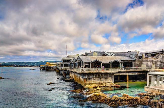 Monterey Bay Aquarium, Monterey, California, Estados Unidos