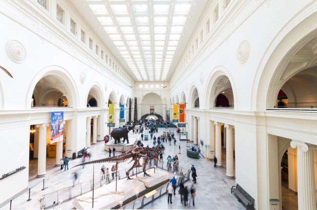 The Field Museum, Chicago, Estados Unidos