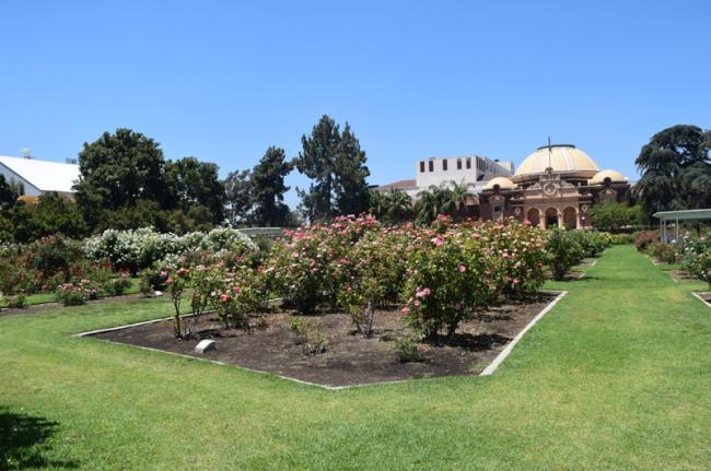 Exposition Park Rose Garden, Los Ángeles, Estados Unidos
