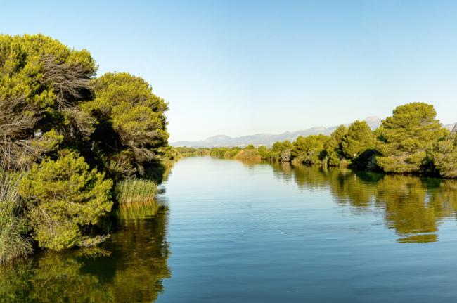 Parc Natural de S'Albufera, Mallorca, Baleares, España
