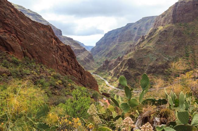 Barranco de Guayadeque, Gran Canaria, Canarias, España