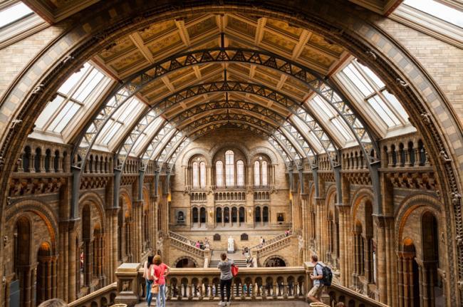 Museo de Historia Natural, Londres, Inglaterra