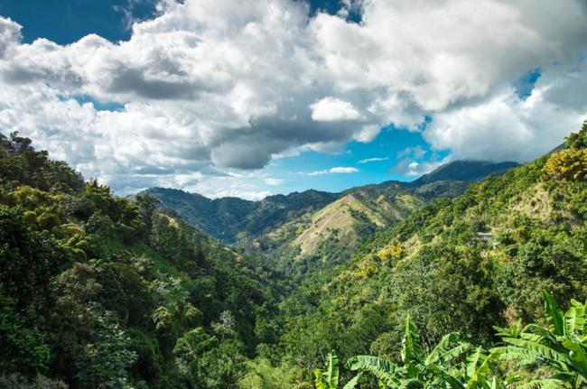 Blue Mountain, Jamaica